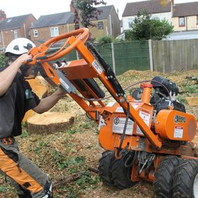 Stump grinding Leicester