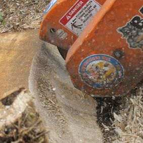 Stump Remover leicester